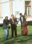 Taraf - Voivodeni, Transylvania